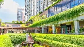 Se una pianta condominiale danneggia il cortile del singolo che succede?