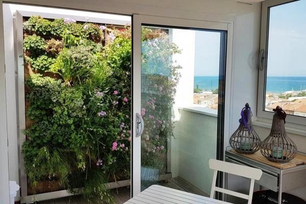 Orto verticale su parete terrazzino - Pellegrini Giardini