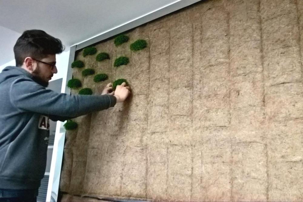 Giardino verticale allestimento - Pellegrini Giardini