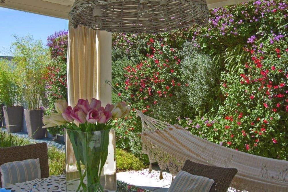 Muro vegetale outdoor - Pellegrini Giardini