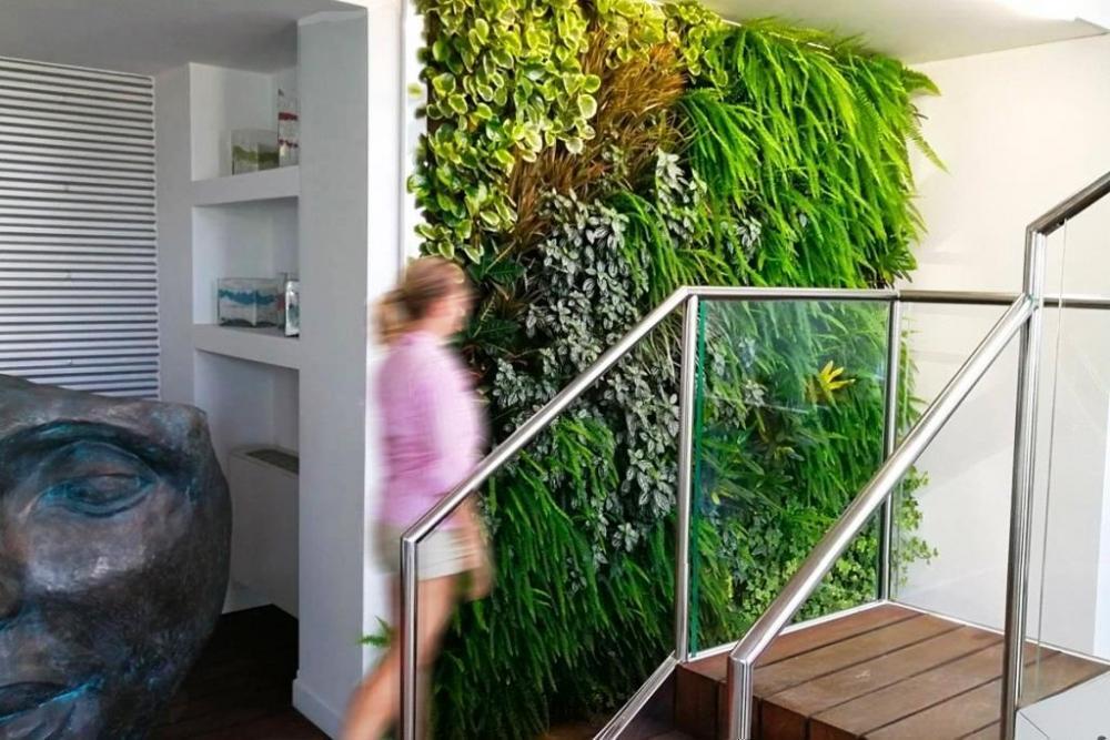 Parete vegetale indoor - Pellegrini Giardini