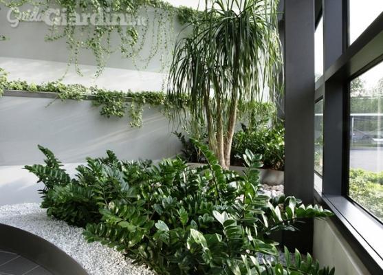 Giardino interno - Officina del Verde