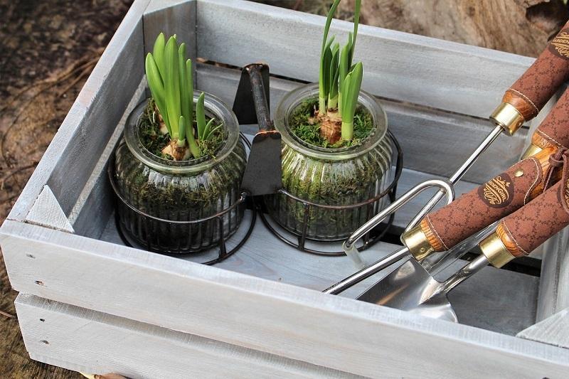 Home gardening mania