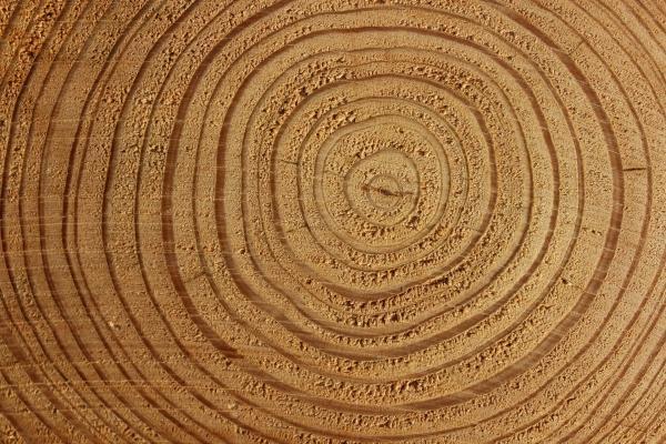 Il legno è il materiale naturale tradizionalmente più usato
