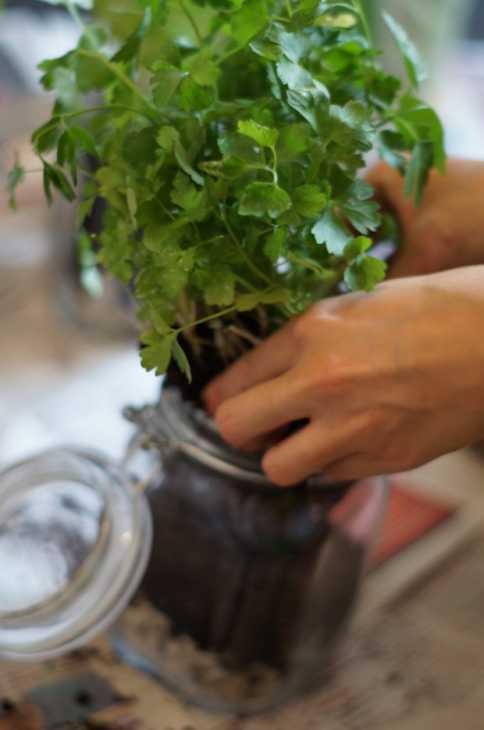 Vasi fai da te con i barattoli di vetro: parte 2, da amigaprincess.com