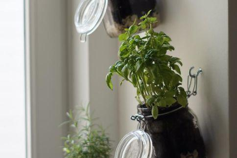 Vasi fai da te con i barattoli di vetro: risultato, da amigaprincess.com