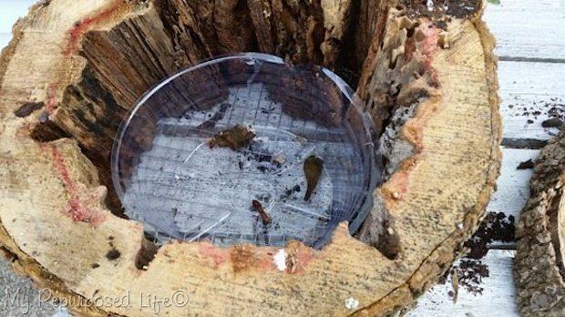 Vasi fai da te con un tronco di legno: parte 2, da myrepurposedlife.com
