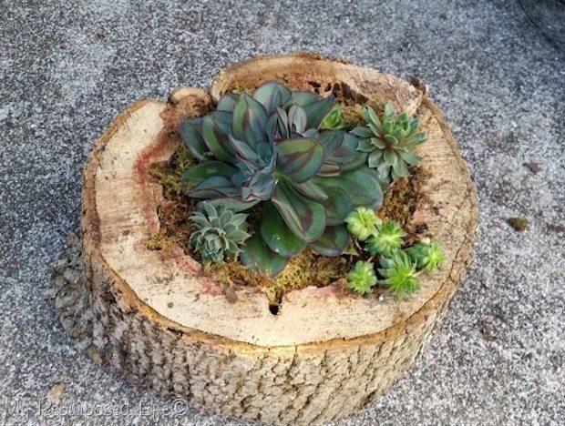 Vasi fai da te con un tronco di legno: risultato, da myrepurposedlife.com