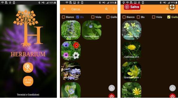 App riconoscimento piante Herbarium