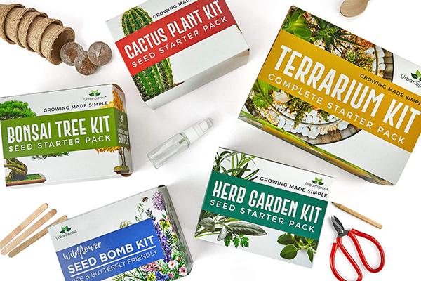 Urban Sprout kit per il Cactus - Amazon