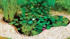 Laghetti ornamentali: un'oasi di benessere in giardino