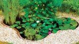 Laghetti ornamentali da giardino