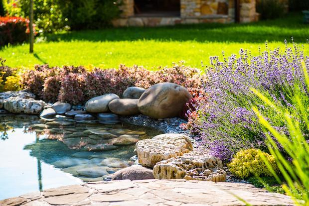 I laghetti da giardino infondono benessere
