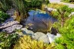 Laghetti ornamentali da giardino: un'oasi di benessere