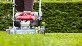 Taglio dell'erba: consigli su quando e come tagliare il prato