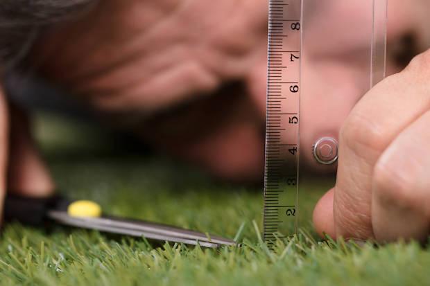 L'altezza dell'erba dipende dal tipo di prato