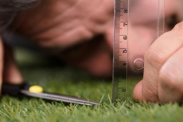 L'altezza dell'erba varia in base alla tipologia di prato