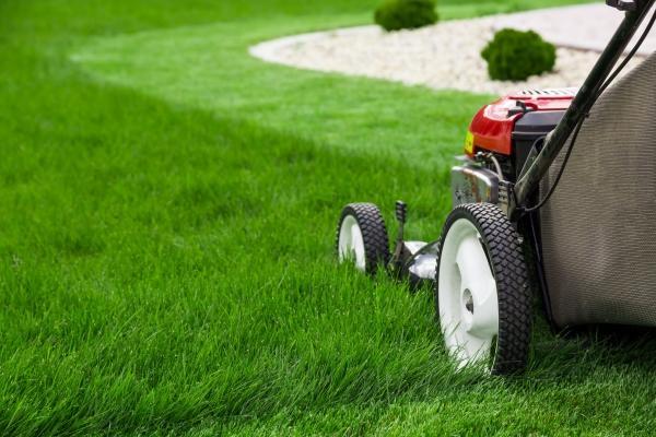 Il taglio erba cambia in base alle stagioni