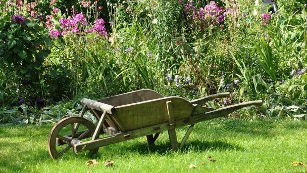 Prodotti naturali per la coltivazione di piante da orto e giardino