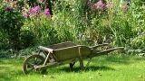 Prodotti naturali per orto e giardino