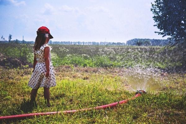 Irrigazione con aggiunta di prodotti naturali per la cura delle piante