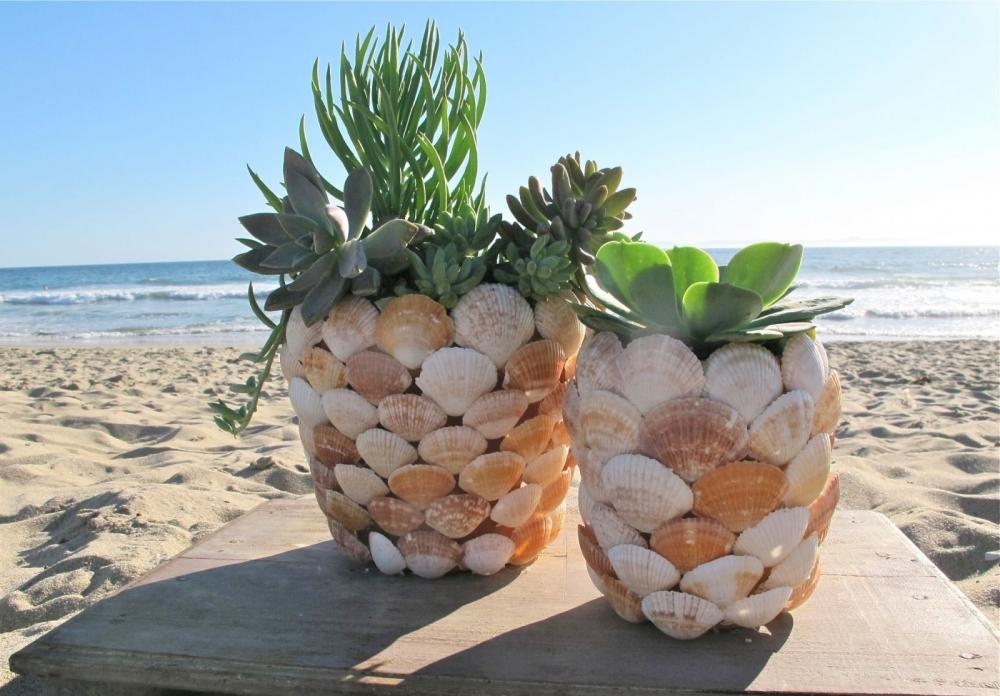 Decorazioni conchiglie: vasi piantine, da billabong.com