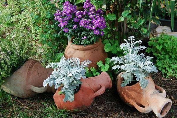 Vasi in giardino secco da stokensentinel.co.uk