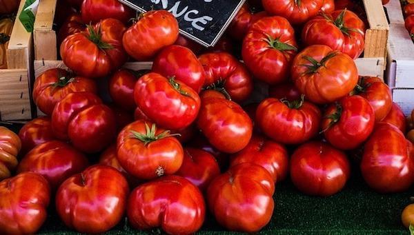 Pomodori cuori di bue