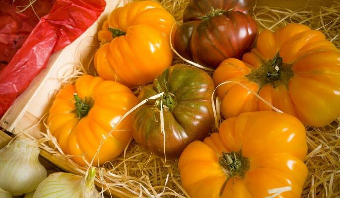 Pomodori costoluti gialli e neri