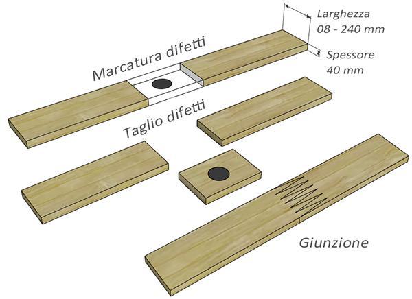 Anatomia del legno lamellare, by Costantini Legno