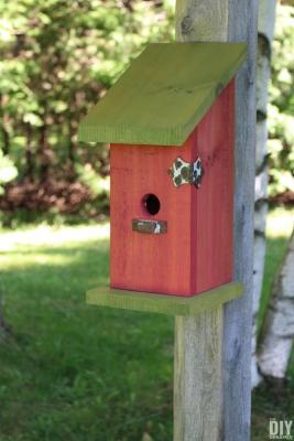 Casetta per uccelli fai da te in legno, da thediydreamer.com