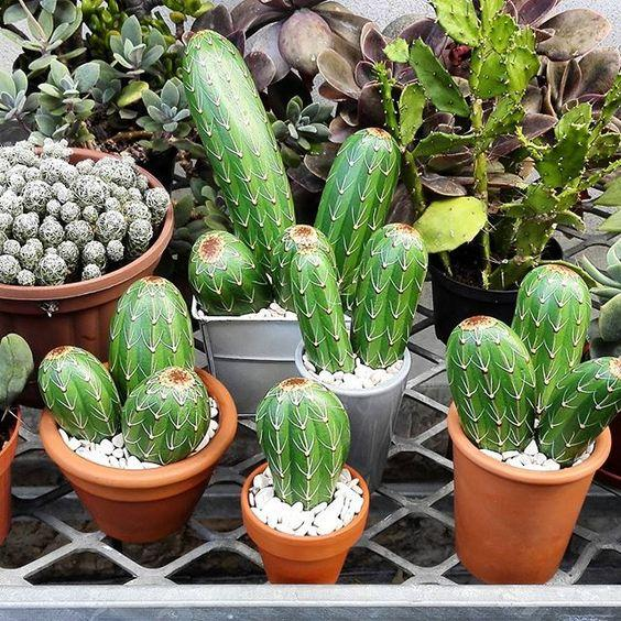 Sassi cactus di riciclotutto.it
