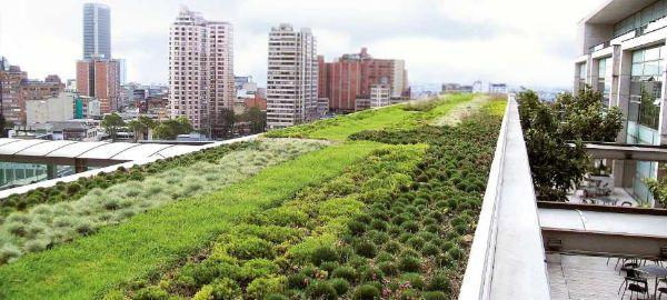 Tetto verde climatico di Zinco