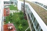 In alcuni casi il tetto verde non è fruibile