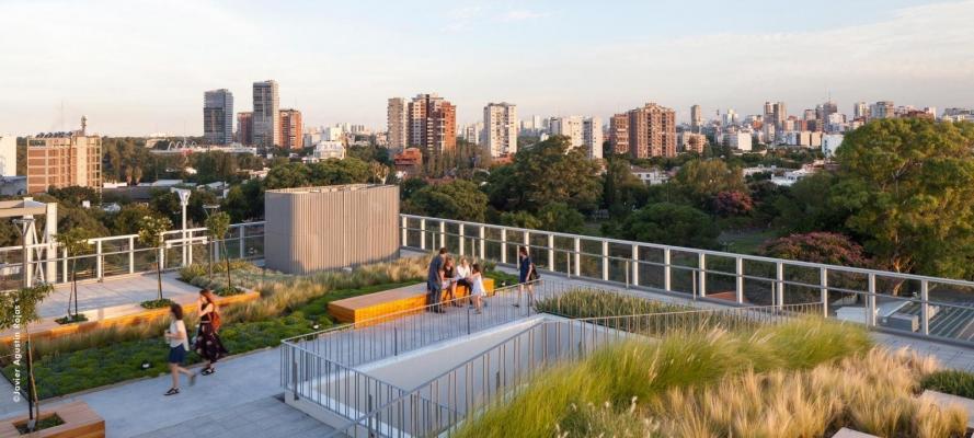 Una terrazza verde realizzata da Zinco tetti verdi