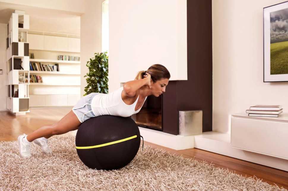 Attrezzi palestra casa - Wellness Ball Technogym