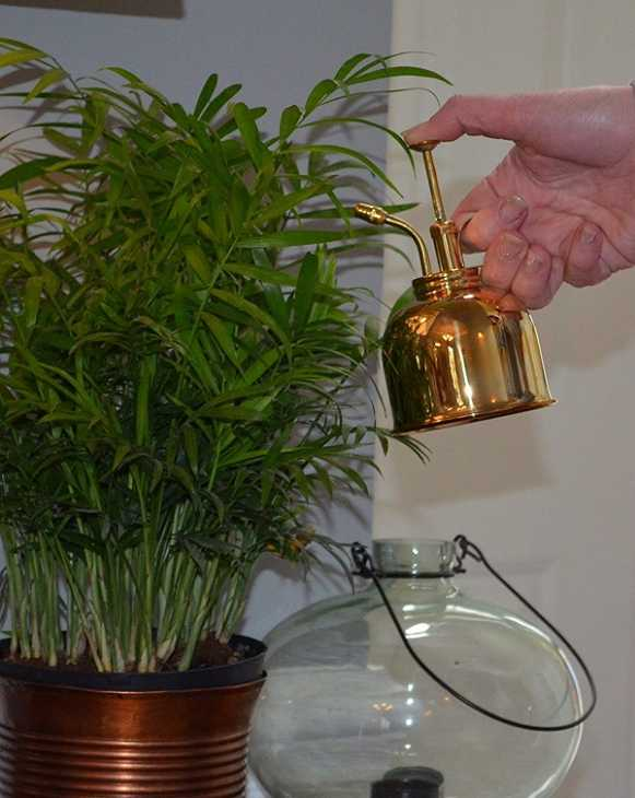 Tra gli articoli da giardino c'è il nebulizzatore di Brass