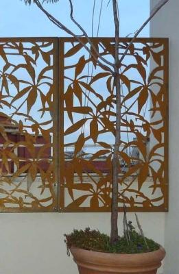 Frangivista Schefflera Corten - Logical Space Design