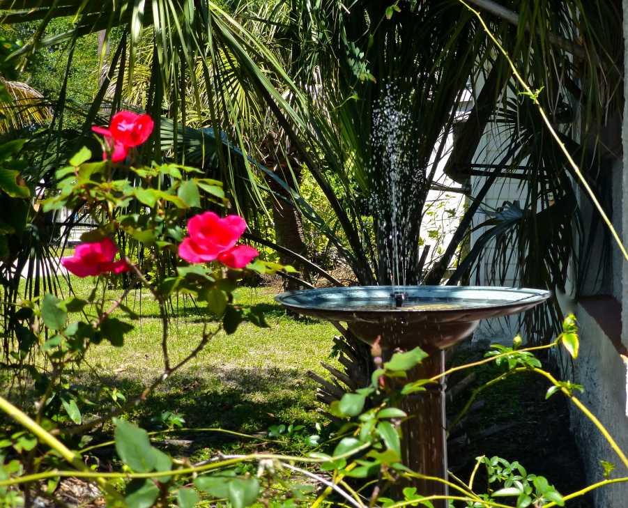 Fontana da giardino a energia solare