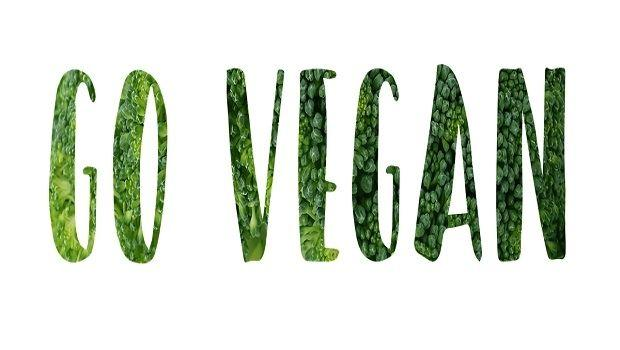 L'arredamento di casa diventa vegano