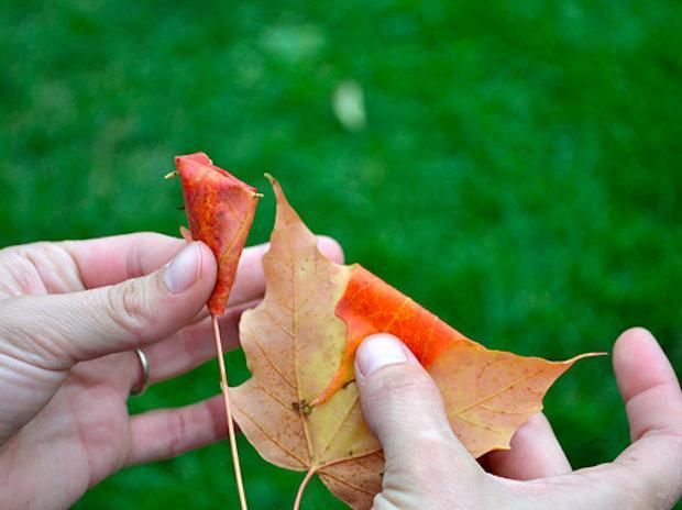 Riciclo foglie secche: bouquet, parte 2, da designsponge.com