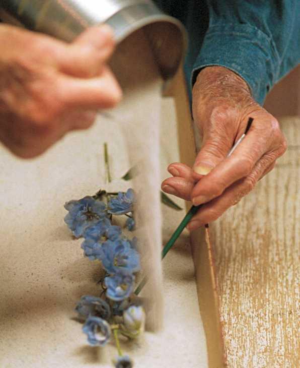 Essiccare con la sabbia, da finegardening.com