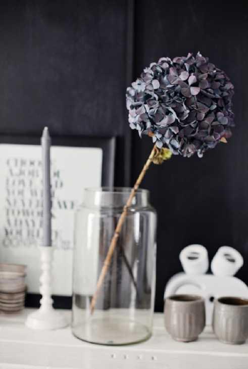 Essiccazione in vaso, da labottegadiamrita.tumblr.com