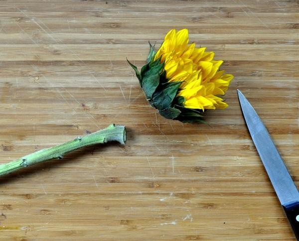 Tagliare il gambo, da madeinaday.com