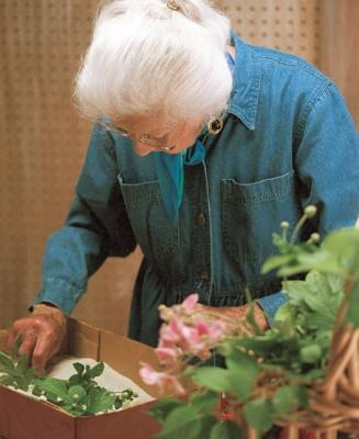 Seccare fiori con la sabbia, da finegardening.com