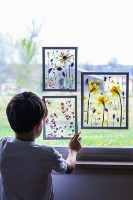 Quadri con fiori secchi pressati, da lilyardor.com