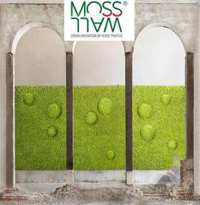 Prodotto Mosswall di Verde Profilo