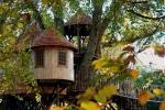 Casa sull'albero Timbertop Hangout - Progetto e foto by Blue Forest