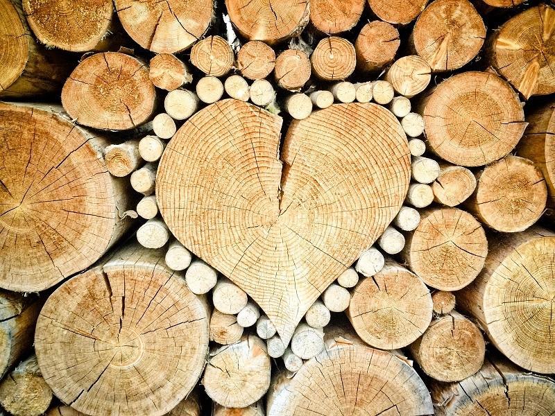 Il legno è tra i materiali più ecosostenibili