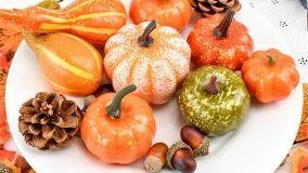 Zucche ornamentali per abbellire casa in Autunno